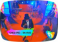 Cumbia 2016 y Cumbia villera 2016 CIRCO PIG